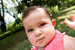 Cara divertida del bebé con las mejillas grandes Fotografía de archivo