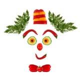 Cara divertida hecha de verduras y de frutas Imagen de archivo