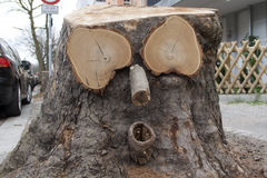 Cara do divertimento da madeira velha em um coto de árvore Imagem de Stock