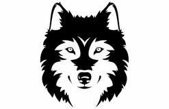 Cara do lobo fotografia de stock