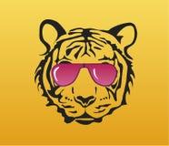 Cara do tigre com vidros cor-de-rosa Imagem de Stock