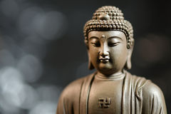 A cara do zen do Buda-estilo no fundo natural Imagem de Stock