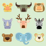 Cara dos animais selvagens Fotografia de Stock Royalty Free