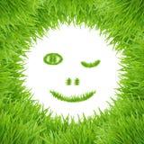 Cara sonriente verde de la hierba del eco Imagen de archivo