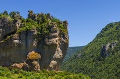 Cara en la roca Imagen de archivo