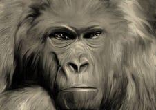 A cara enigmática do macaco ilustração stock