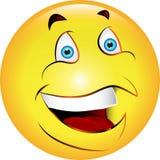 Cara feliz lustrosa Imagens de Stock