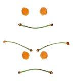 Cara feliz y enojada Fotos de archivo libres de regalías
