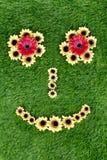 Cara hecha de girasoles en hierba verde imagen de archivo