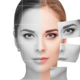 Cara hecha de muchos diversos retratos descoloridos y coloreados Concepto de la cirugía plástica Fotografía de archivo libre de regalías