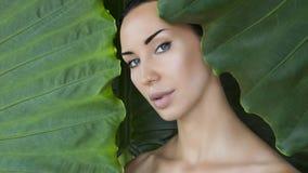 Cara hermosa de la mujer con maquillaje desnudo natural en un pasto tropical imagenes de archivo