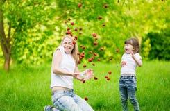 Cara, mosca de la fresa, diversión, Fotografía de archivo libre de regalías