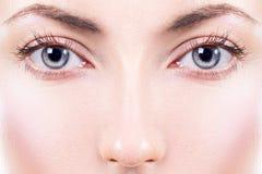 Cara Olhos fêmeas bonitos Imagem de Stock Royalty Free