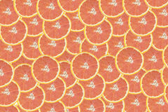 Cara orange slice  isolate on the white background,above view Royalty Free Stock Photo