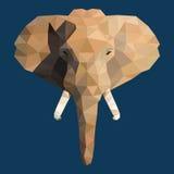 Cara poligonal del elefante Fotos de archivo libres de regalías