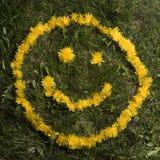 Cara sonriente en dientes de león Fotografía de archivo libre de regalías
