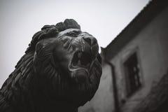 Cara sorrir forçadamente do leão, estátua Imagens de Stock
