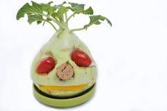 Cara vegetal Fotografía de archivo