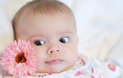Cara y flor del bebé Foto de archivo