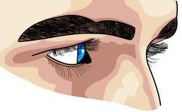 Cara y ojos resueltos. Fotos de archivo