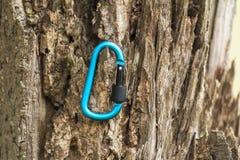 Carabine en métal pour l'alpinisme Photo des carabines colorés image libre de droits