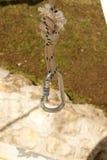 Carabiner на веревочке Стоковое Изображение RF