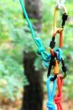 Carabiner avec la corde sur le fond de nature Image stock