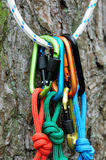 Carabiner climbing close-up. Royalty Free Stock Photos