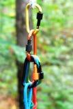 Carabiner con la corda sul fondo della natura Immagini Stock