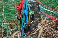 Carabiner con la corda sul fondo della natura Fotografia Stock Libera da Diritti