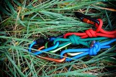 Carabiner con la corda sul fondo della natura Fotografie Stock