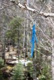Carabiner på en zipline Royaltyfria Foton