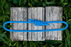 Carabiner and rope on a natural background. Joined rope ends with double overhand knots Royalty Free Stock Photo