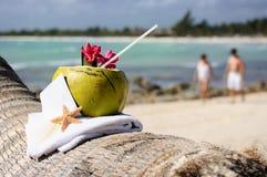 Caraïbische de kokosnotencocktail van het paradijsstrand Stock Foto