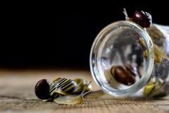 Caracóis coloridos grandes e pequenos em um frasco de vidro Tabela de madeira Fotos de Stock