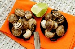 Caracóis com manteiga de alho fotografia de stock royalty free