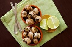 Caracóis com manteiga de alho fotografia de stock