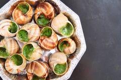 Caracóis como o alimento de gourmet Foto de Stock Royalty Free