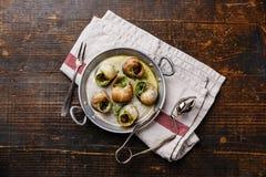 Caracóis do escargot com manteiga de ervas do alho imagens de stock royalty free