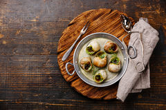 Caracóis do escargot com manteiga de ervas do alho foto de stock