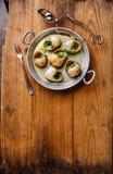 Caracóis do escargot de Bourgogne com manteiga de ervas do alho fotografia de stock royalty free