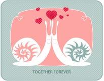 Caracóis no amor Imagem de Stock