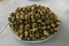 Caracóis ou escargot cozinhado imagens de stock
