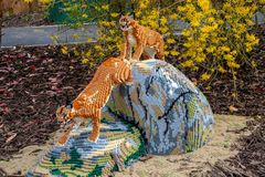 A Caracal statue made from Lego bricks. CHESTER, UNITED KINGDOM - MARCH 27TH 2019: A Caracal statue made from Lego bricks stock photography