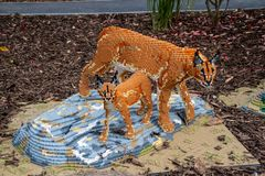 A Caracal statue made from Lego bricks. CHESTER, UNITED KINGDOM - MARCH 27TH 2019: A Caracal statue made from Lego bricks royalty free stock photography