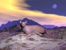 Caracal of woestijn 3D lynx - geef terug Stock Fotografie
