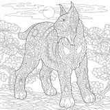 Caracal Zentangle svindel- lodjurbobcat stock illustrationer