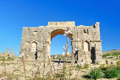 Caracalla,古老罗马市曲拱在罗马废墟的Volubilis 摩洛哥 免版税库存图片