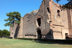 Caracalla Royalty Free Stock Photo
