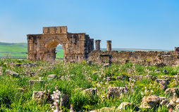 Caracalla Triumphal Arch at Volubilis, a UNESCO heritage site in Morocco. Caracalla Triumphal Arch at Volubilis, a UNESCO world heritage site in Morocco Royalty Free Stock Photo